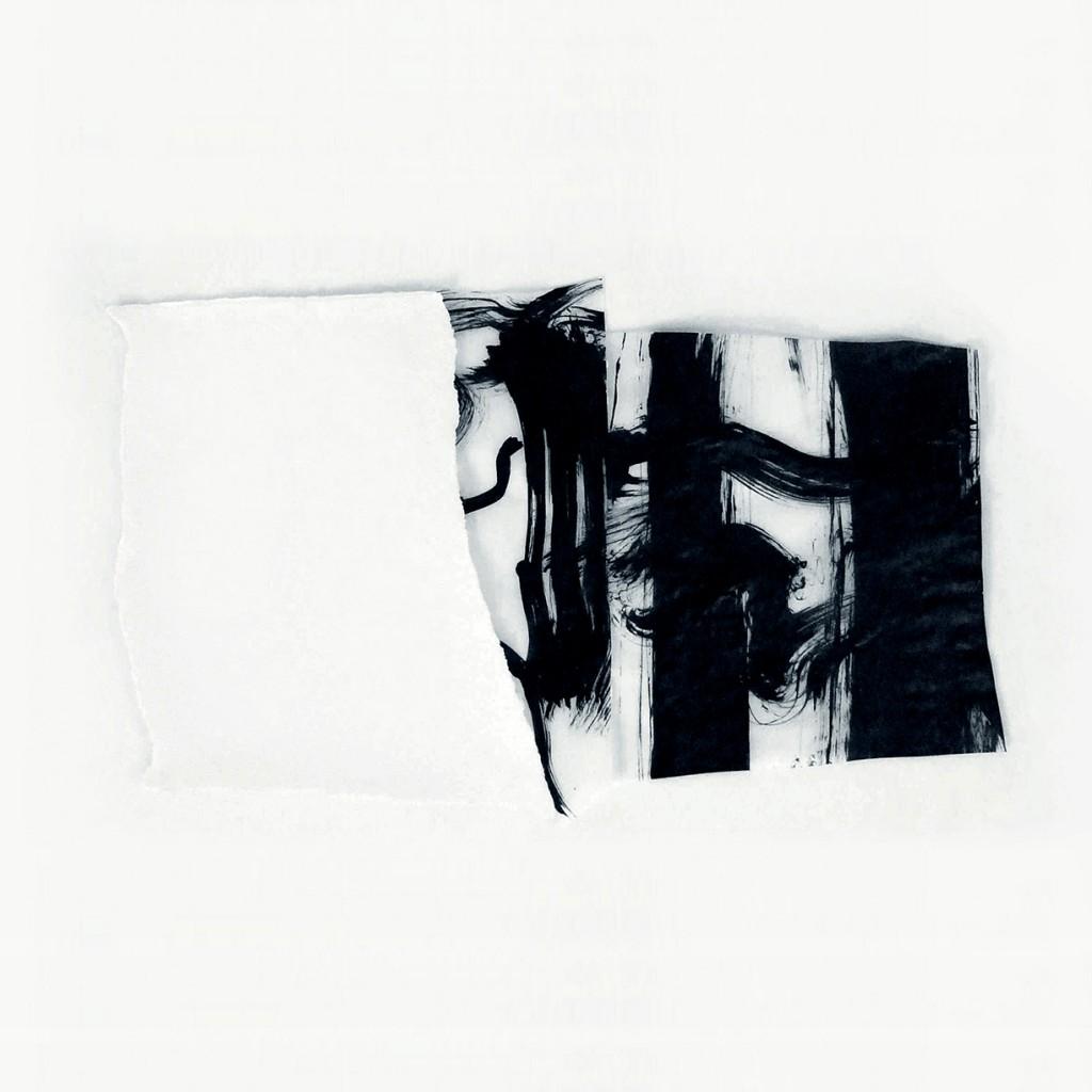 <i>Alpha</i>, papier et encre sur calque, 34x55cm, 2011