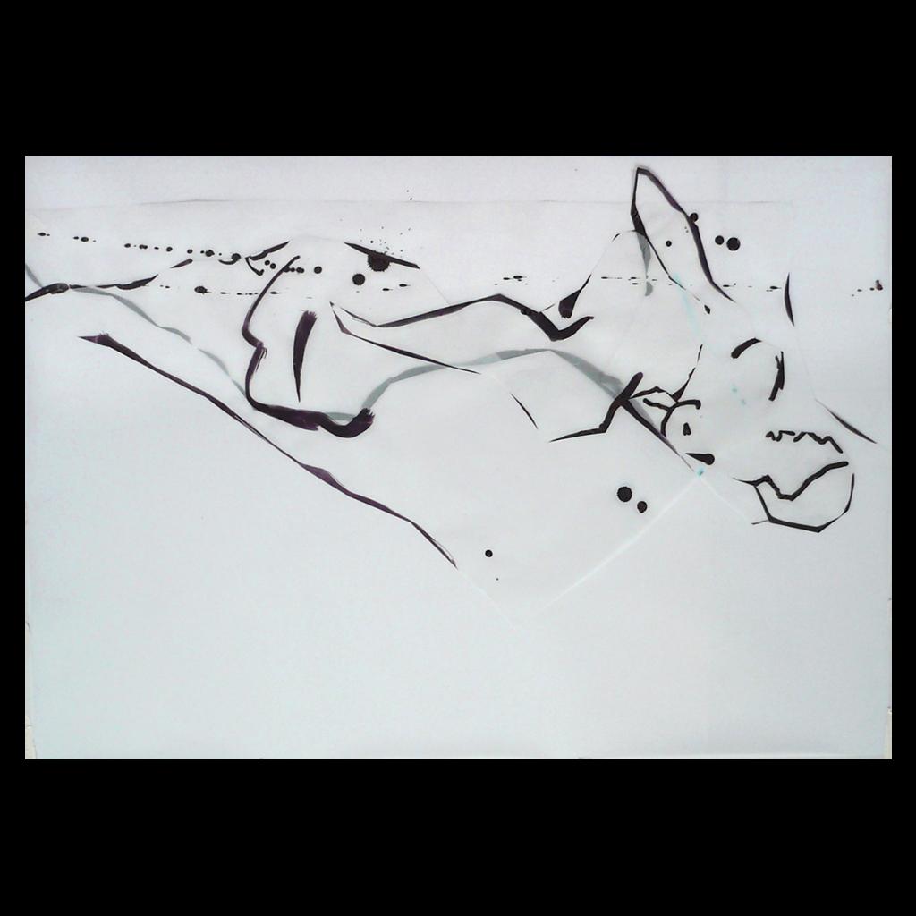 <i>Rêve lucide</i>, encre sur calque, 54x85cm, 2008